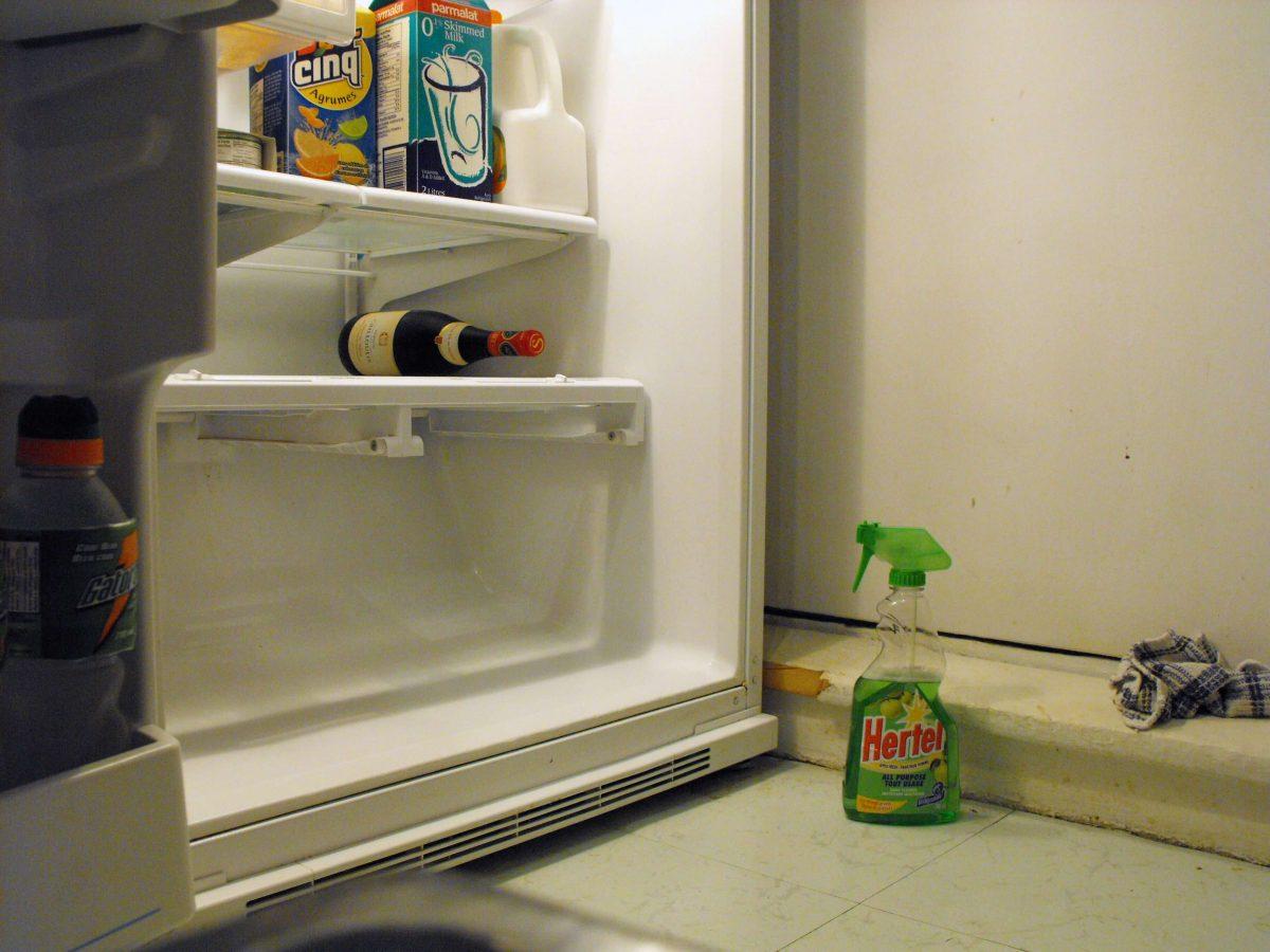 schimmel koelkast verwijderen