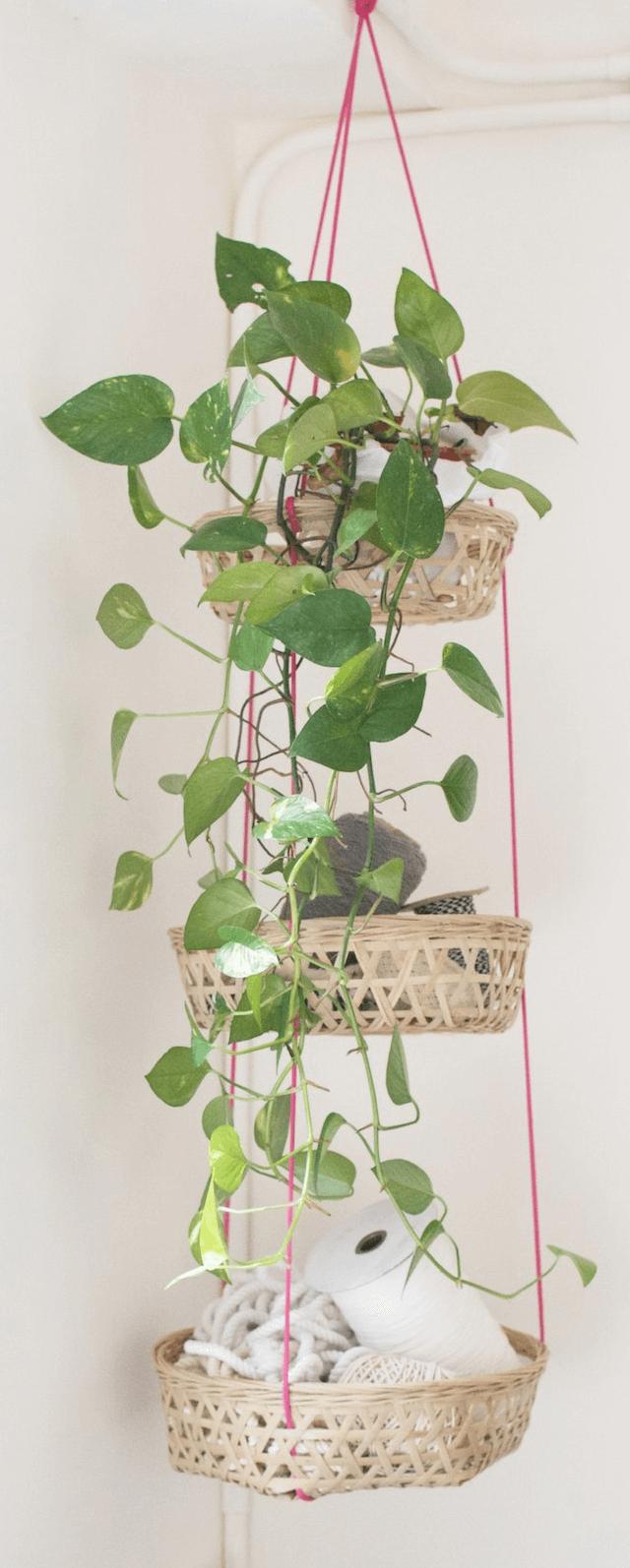 Muurverf Voor De Badkamer ~   de vensterbank of verschillende planten in de badkamer bij elkaar op
