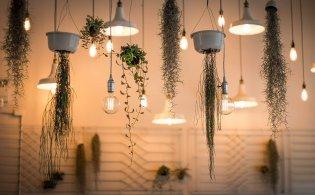 Een ruimte inrichten met planten