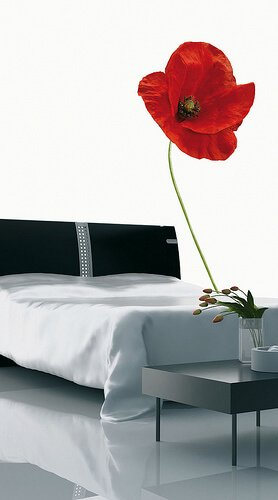 Gezond slapen? Ook je slaapkamer draagt hier aan bij!