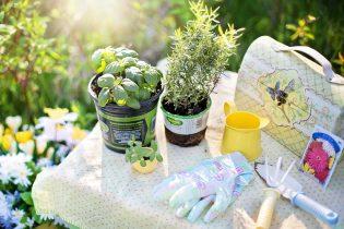 Tuinieren gereedschap