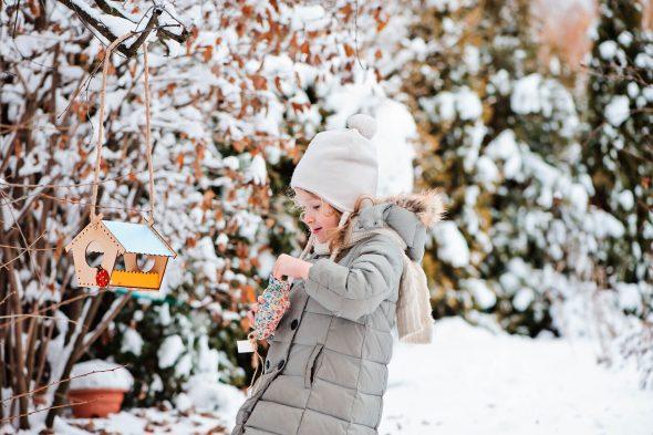 Tuin onderhouden in de winter