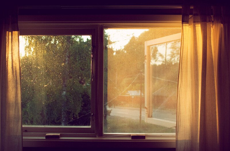 Muggen verjagen - Muggenplaag in huis - Tips tegen muggen | Wiki Wonen