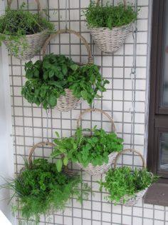 Balkon ideeen - Verticaal tuinieren