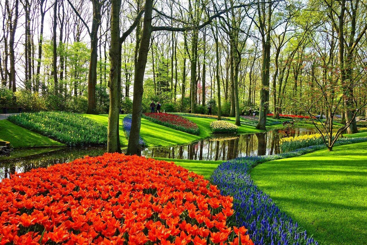 Het creëren van je ideale tuin