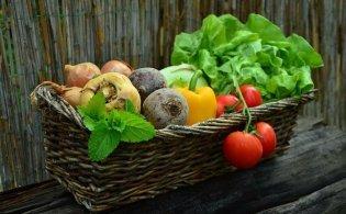 Het opnieuw inrichten van je tuin met deze handige tips